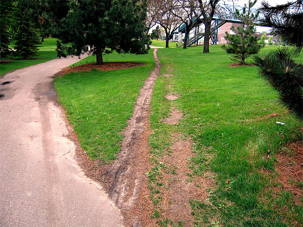 desire-path