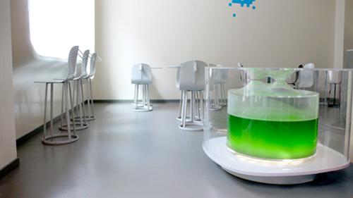 Mathieu lehanneur: flood restaurants. u2013 shape colour