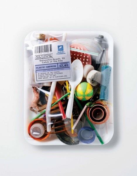 surfrider-foundation-catch-day-plastic