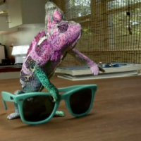 ray ban + never hide: super chameleon.